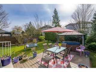 "Photo 35: 18246 69 Avenue in Surrey: Cloverdale BC House for sale in ""CLOVERWOODS"" (Cloverdale)  : MLS®# R2552795"