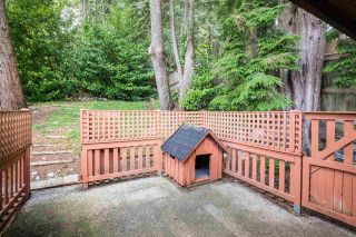 Photo 30: 2497 PANORAMA Drive in North Vancouver: Deep Cove House for sale : MLS®# R2579215