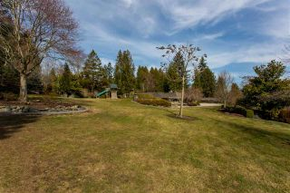 """Photo 14: 21446 76 Avenue in Langley: Willoughby Heights House for sale in """"Willoughby Heights"""" : MLS®# R2405321"""
