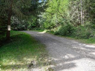 Photo 3: 5999 FORBIDDEN PLATEAU ROAD in COURTENAY: CV Courtenay West House for sale (Comox Valley)  : MLS®# 787510