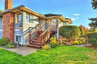 Photo 15: 4299 Panorama Pl in VICTORIA: SE Lake Hill House for sale (Saanich East)  : MLS®# 774088