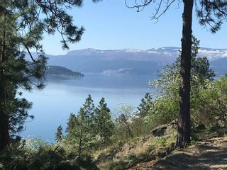 Photo 18: 8800 Tronson Road, in Vernon: Vacant Land for sale : MLS®# 10236093