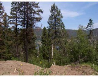 Photo 4: 1706 HAZEL Street in Williams Lake: Williams Lake - City Land for sale (Williams Lake (Zone 27))  : MLS®# N192828