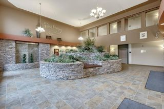 Photo 21: 340 10 DISCOVERY RIDGE Close SW in Calgary: Discovery Ridge Apartment for sale : MLS®# C4295828