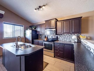 Photo 5: 251 Prestwick Landing SE in Calgary: McKenzie Towne Detached for sale : MLS®# A1095129