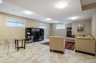 Photo 29: 68 Enchanted Way: St. Albert House for sale : MLS®# E4248696