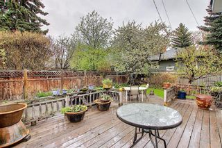 Photo 6: 710 38 Avenue SW: Calgary Detached for sale : MLS®# A1112119
