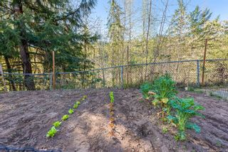 Photo 50: 2517 Dunsmuir Ave in : CV Cumberland House for sale (Comox Valley)  : MLS®# 873636