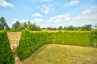 Photo 11: 3155 BRADNER Road in Abbotsford: Aberdeen Agri-Business for sale : MLS®# C8039365