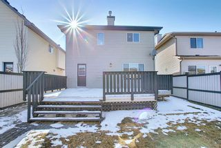Photo 44: 253 Elgin Way SE in Calgary: McKenzie Towne Detached for sale : MLS®# A1087799