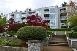 Photo 1: 203 8430 JELLICOE STREET in Vancouver: South Marine Condo for sale (Vancouver East)  : MLS®# R2572343