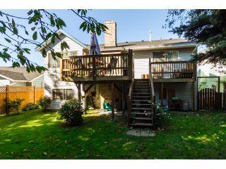 Photo 19: 21154 93RD AV in Langley: Walnut Grove House for sale : MLS®# F1422745