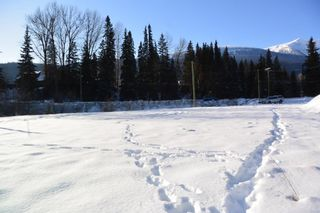 Photo 18: LOT A W 16 Highway in Smithers: Smithers - Town Land for sale (Smithers And Area (Zone 54))  : MLS®# R2533470