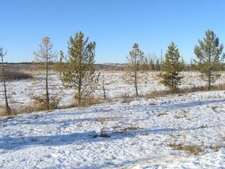 Photo 5: 81230 2378 Drive E: Rural Foothills County Land for sale : MLS®# A1063147