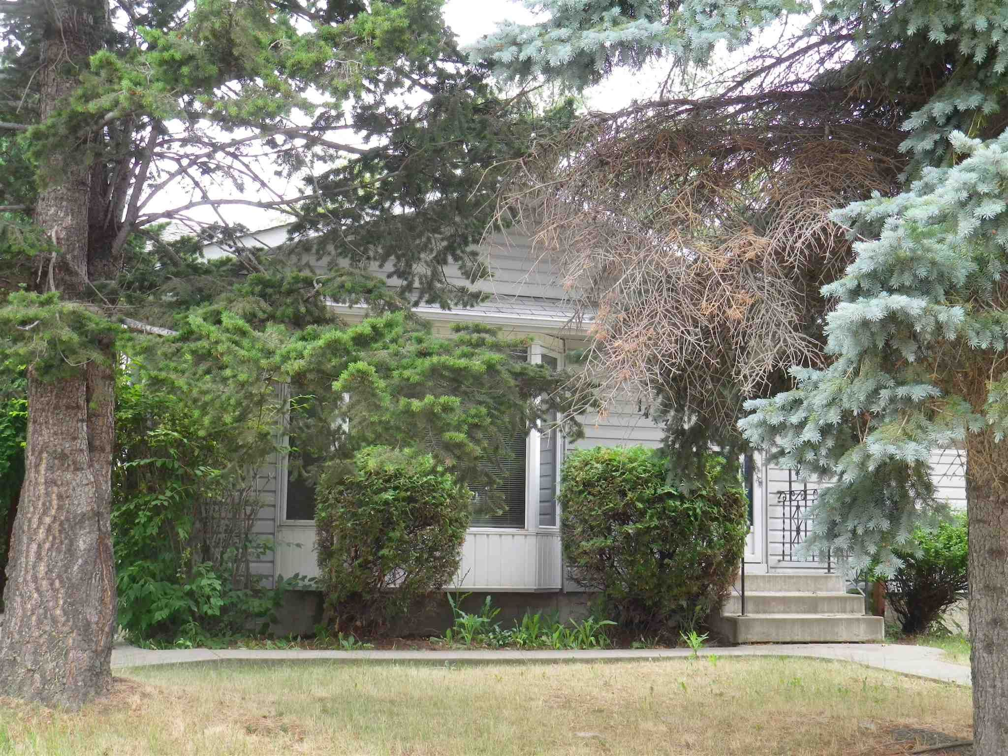 Main Photo: 14436 62 Street in Edmonton: Zone 02 House for sale : MLS®# E4255493