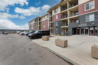 Photo 5: 306 5810 MULLEN Place in Edmonton: Zone 14 Condo for sale : MLS®# E4241982