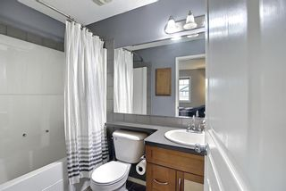 Photo 16: 2350 Sagewood Crescent SW: Airdrie Detached for sale : MLS®# A1117876
