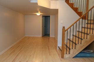 Photo 27: 160 Burrin Avenue in Winnipeg: Single Family Detached for sale (4D)  : MLS®# 1911971