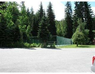 Photo 7: # 33 6800 CRABAPPLE DR in Whistler: Condo for sale : MLS®# V839933