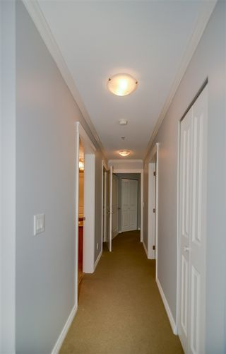Photo 15: 208 22255 122 Avenue in Maple Ridge: West Central Condo for sale : MLS®# R2105719