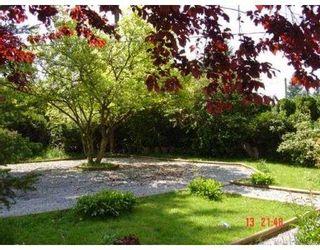 Photo 3: 21051 DEWDNEY TRUNK RD in Maple Ridge: Northwest Maple Ridge House for sale : MLS®# V592253