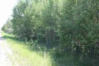 Photo 8: TWP 494 RR 42: Rural Leduc County Rural Land/Vacant Lot for sale : MLS®# E4252228