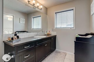 Photo 19: 96 COPPERSTONE Drive SE in Calgary: Copperfield Detached for sale : MLS®# C4303623