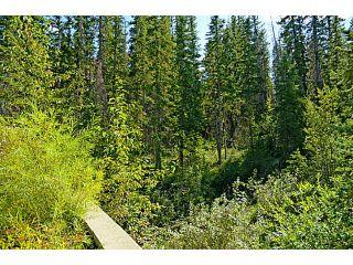 Photo 18: 539 10 DISCOVERY RIDGE Close SW in CALGARY: Discovery Ridge Condo for sale (Calgary)  : MLS®# C3596343