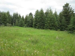 Photo 7: 12 KMS NORTH ON COCHRANE in COCHRANE: Rural Rocky View MD Rural Land for sale : MLS®# C3526638