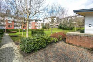 """Photo 16: 314 4723 DAWSON Street in Burnaby: Brentwood Park Condo for sale in """"COLLAGE BY POLYGON"""" (Burnaby North)  : MLS®# R2149992"""