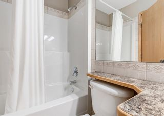 Photo 27: 103 DOHERTY Close: Red Deer Detached for sale : MLS®# A1147835