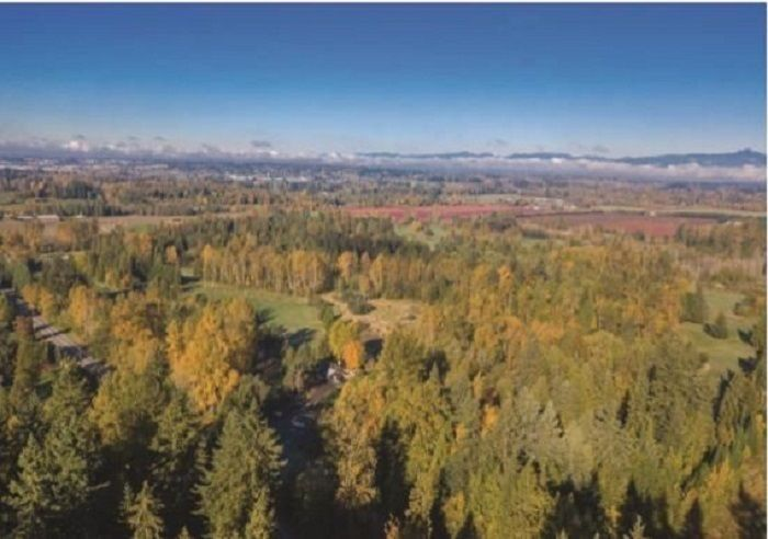 """Main Photo: LT.2 56 AVENUE in Langley: Salmon River Land for sale in """"Tall Timbers"""" : MLS®# R2550230"""