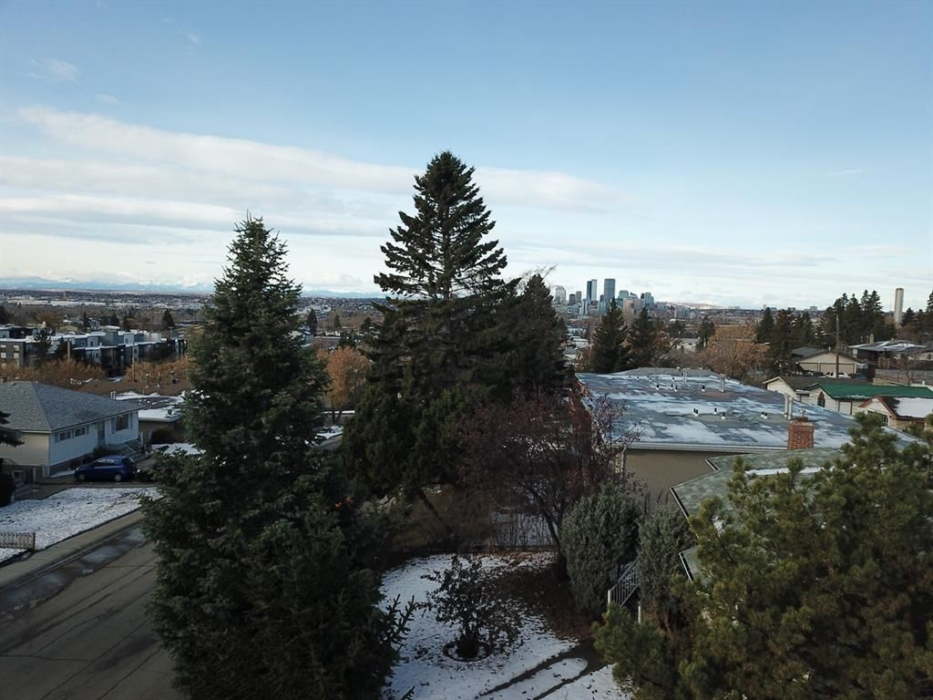 Main Photo: 2822 11 Avenue SE in Calgary: Albert Park/Radisson Heights Detached for sale : MLS®# A1046566