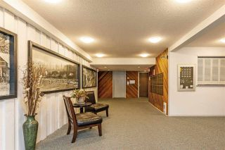"Photo 17: 302 1355 WINTER Street: White Rock Condo for sale in ""Summerhill"" (South Surrey White Rock)  : MLS®# R2557825"