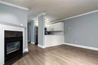 Photo 7: 105 2375 SHAUGHNESSY Street in Port Coquitlam: Central Pt Coquitlam Condo for sale : MLS®# R2128851