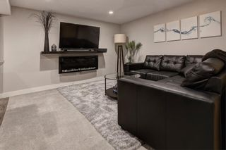 Photo 32: 32 Citadel Ridge Place NW in Calgary: Citadel Detached for sale : MLS®# A1070239