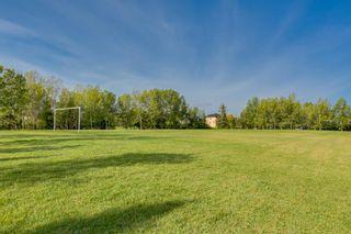 Photo 45: 35 DOUGLAS GLEN Place SE in Calgary: Douglasdale/Glen Detached for sale : MLS®# A1154462
