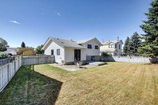 Photo 37: 8602 107 Avenue: Morinville House for sale : MLS®# E4258625