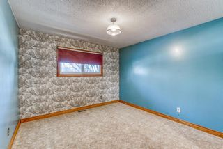 Photo 19: 345 Whitney Crescent SE in Calgary: Willow Park Detached for sale : MLS®# A1061580