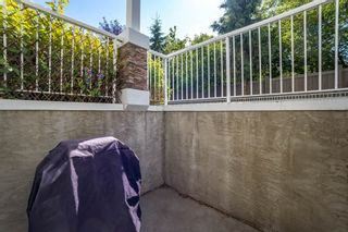 Photo 22: 44D 79 Bellerose Drive: St. Albert Carriage for sale : MLS®# E4225057