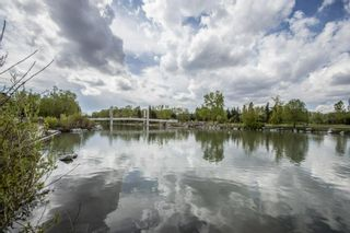 Photo 33: 353 222 Riverfront Avenue SW in Calgary: Chinatown Apartment for sale : MLS®# A1126286