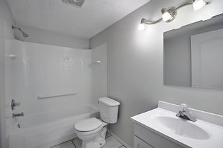 Photo 38: 253 Elgin Way SE in Calgary: McKenzie Towne Detached for sale : MLS®# A1087799