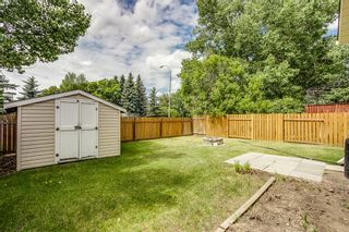Photo 25: 11 Emberdale Way SE: Airdrie Detached for sale : MLS®# A1124079