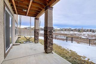 Photo 47: 37 Sage Hill Landing NW in Calgary: Sage Hill Detached for sale : MLS®# A1061545