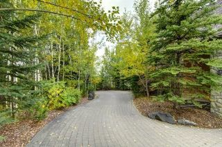 Photo 5: 268 Snowberry Circle in Rural Rocky View County: Rural Rocky View MD Detached for sale : MLS®# A1123459