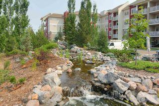 Photo 5: 412B 511 QUEEN Street: Spruce Grove Condo for sale : MLS®# E4255260