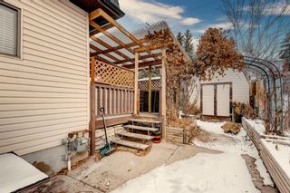 Photo 9: 4624 22 Avenue NW in Calgary: Montgomery Detached for sale : MLS®# A1055200