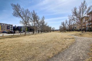 Photo 24: 102 4455A Greenview Drive NE in Calgary: Greenview Apartment for sale : MLS®# A1088042