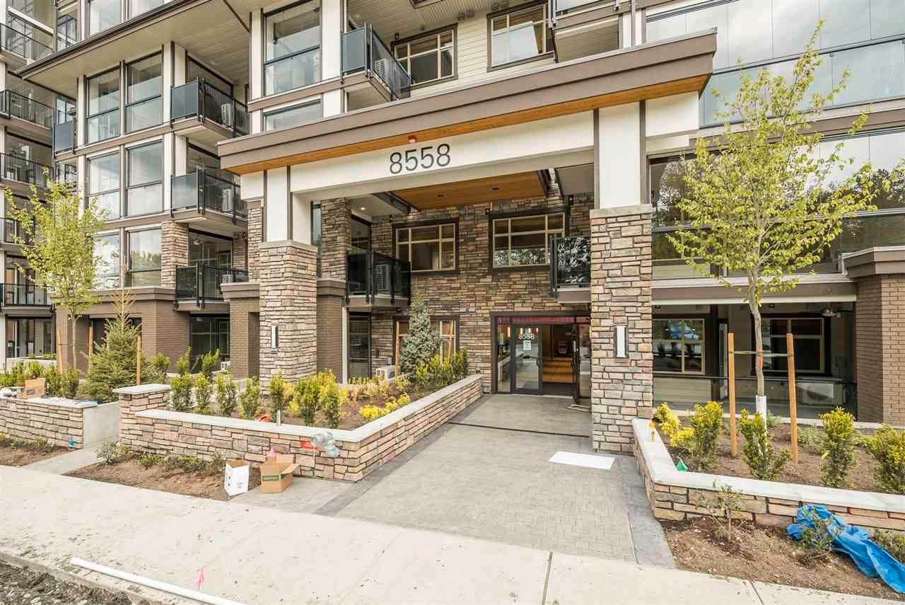 """Main Photo: 505 8538 203A Street in Langley: Willoughby Heights Condo for sale in """"Yorkson Park East"""" : MLS®# R2590954"""
