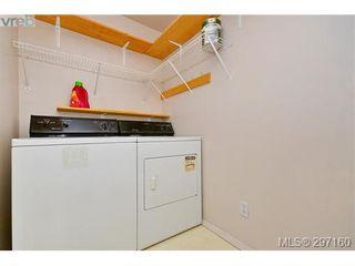 Photo 15: 403 894 Vernon Ave in VICTORIA: SE Swan Lake Condo for sale (Saanich East)  : MLS®# 579898